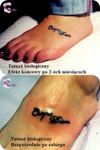 Tatuaż biologiczny
